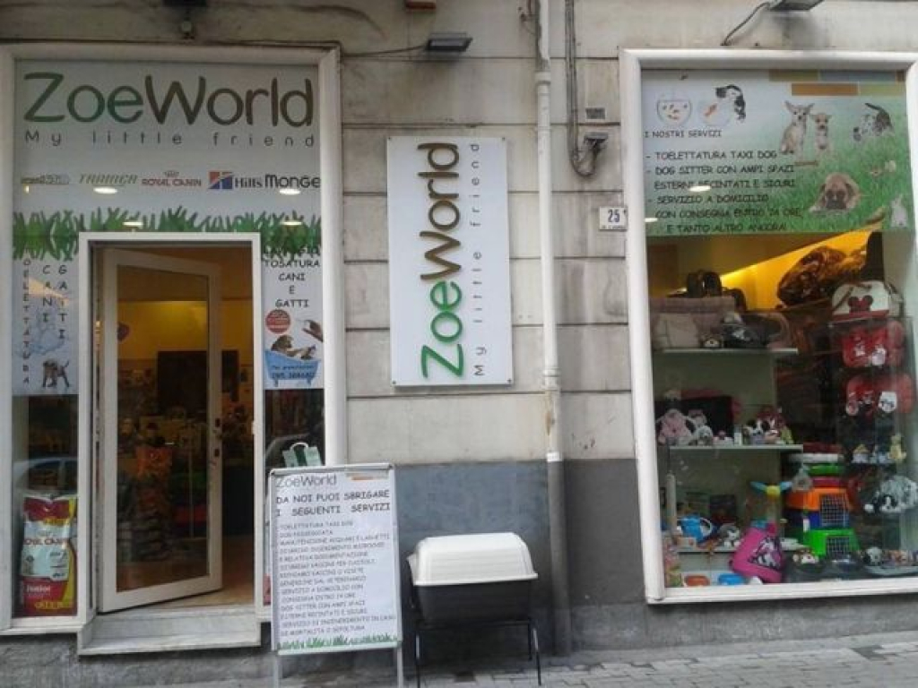 Zoe World Catania 0
